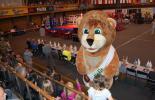 Lvov 2010_Opening ceremony_3
